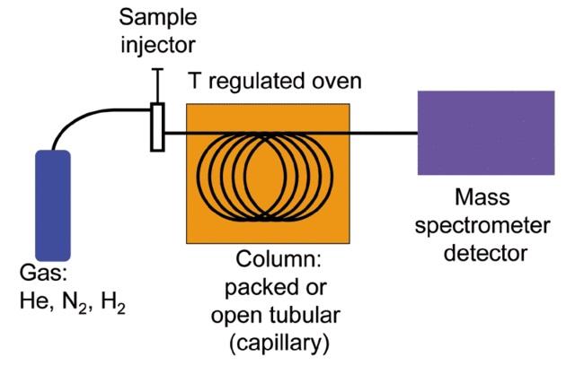 Gas Chromatography Theory