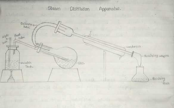 Types of distillation- steam distillation