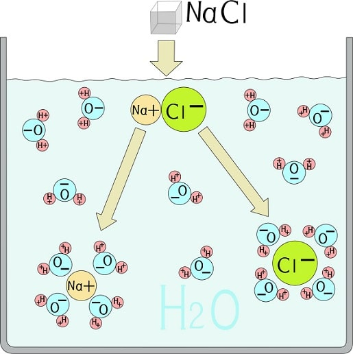 Ions of sodium and chloride in water