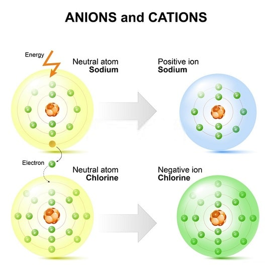 Difference between ion and atom
